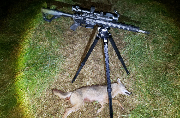 Hunting with Pulsar Digex
